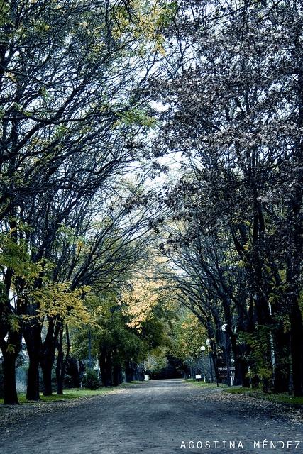 Sierra de la Ventana, Argentina.