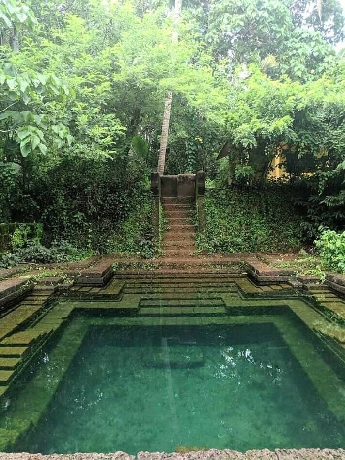 Modern Design Natural Swimming Pools Natural Swimming Pools Pools Small Pools Swimming Pools Natura Water Architecture Village House Design House Boat Kerala