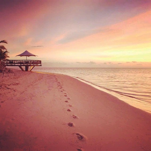 Fiji Beaches: 54 Best Images About Fiji Sunsets On Pinterest
