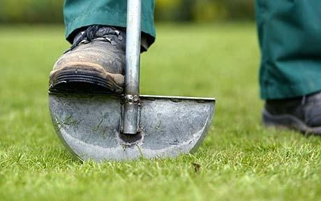 must have - 'half-moon' lawn edger..