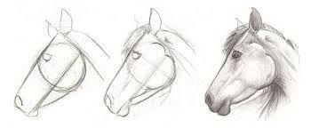 how to draw a horse step by step – Google Search – Cowpoke Corner