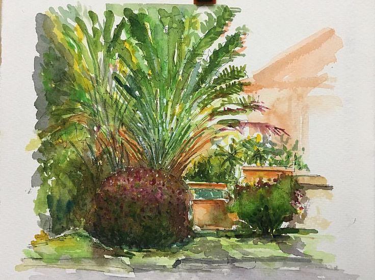 House front garden...neighborhood Subang Jaya #klusk #worldwaterday #urbansketchers #urbansketch #sketchbook #worldwaterday #sketches #saunders #holbein #garden #watercolor
