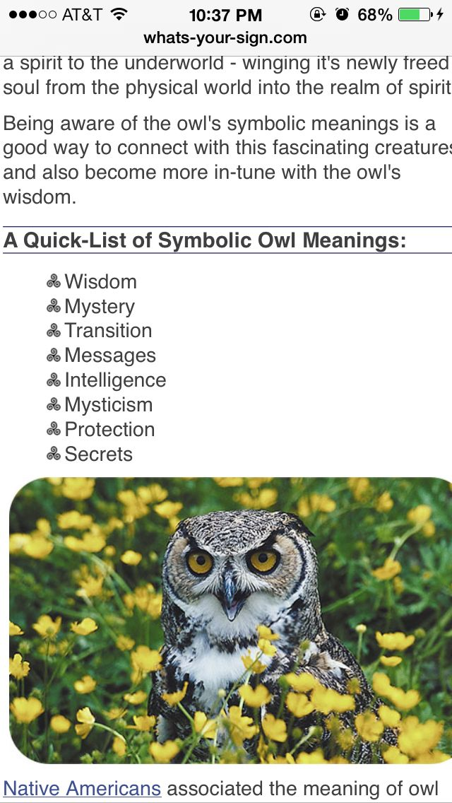 Owl tattoo meaning/place characteristics in shape of ...