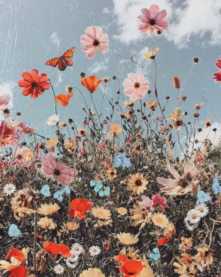 Sage green wallpaper aesthetic flowers are a theme that is being searched for and liked by netizens nowadays. Spring Equinox — Siobhan O'Dwyer Art | Picture collage