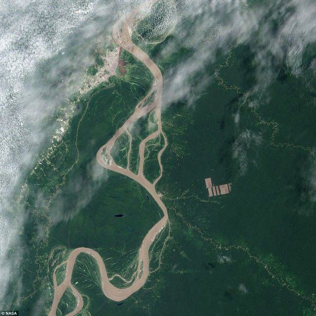 Deforestatiosn of Amazon