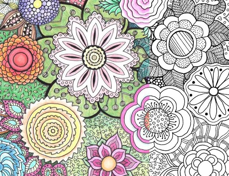 Coloring Page For Adults Zentangle Flowers Free PDF Download