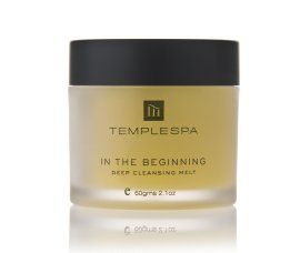 In The Beginning: Facial Cleanser for Dry Skin from Temple Spa