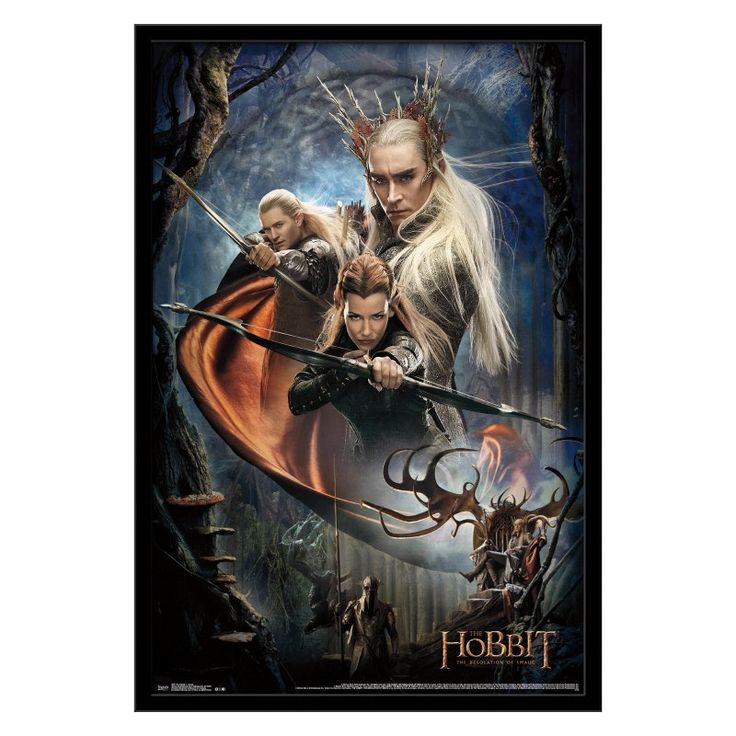 Trends International The Hobbit 2 - Group Wall Poster - FR5976BLK22X34