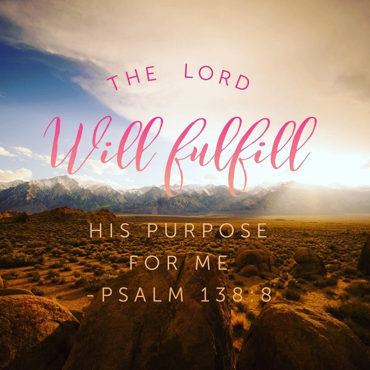 We get so caught up in our lack of qualifications for what God has called us to do. But he works through our weaknesses, in spite of our skills or strength. He is the one who will fulfill his purpose in us and this is what allows us to be #confidentinhim Psalm 138:1-8#biblereading