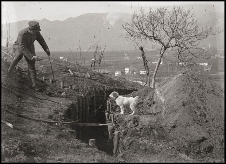 An Italian soldier helps a dog cross a trench during the Battle of Asiago, 1916
