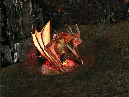 Fighting a Withering Fire Drake in Agmar.