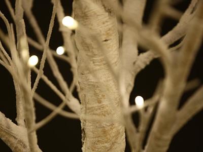 Juniper LED Tree - Snow    Available at Papaya Online  http://papaya.com.au/product-details.aspx?ProductCode=DEC828WWEB