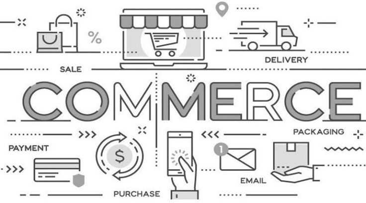 Boosting your career prospects with a degree in commerce