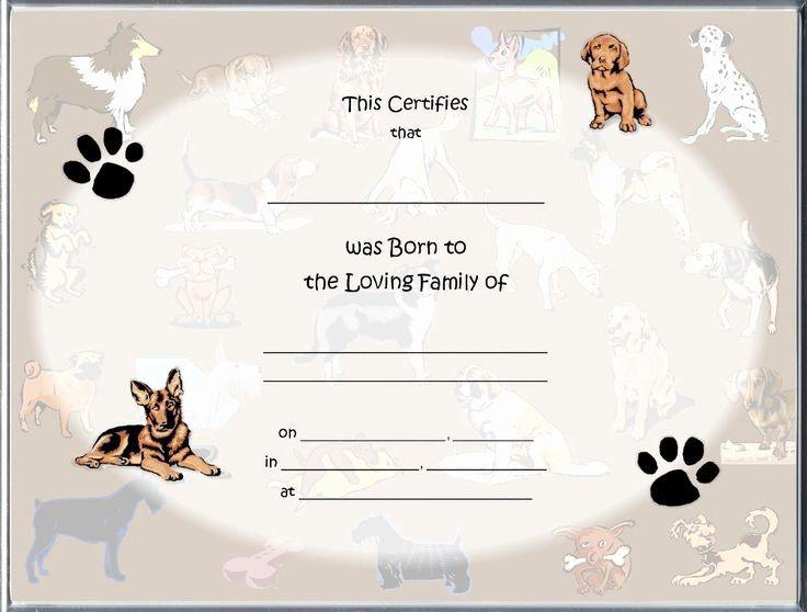 Puppy Birth Certificate Template Free Unique 85 Best Raisin A Puppy Images On Pinterest Dog Birth Birth Certificate Template Birth Certificate