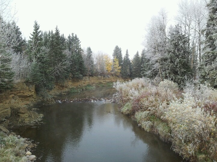Rimbey - blindman river  Scatter a handful of ashes here