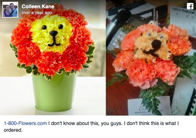 Even when you do get flowers, they can look different than what they did on the website. | 17 People Who Did Not Get What They Ordered Online
