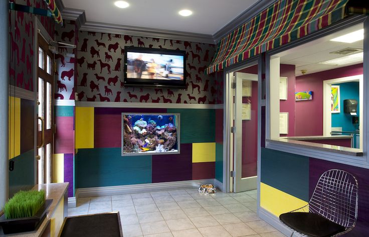 Designed to comfort and calm pet owners in this animal hospital waiting room, we used fun colors, animal motif wallpaper and wall art, an aquarium, and the large screen television.
