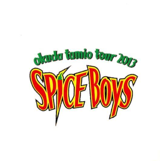 TOUR 2013