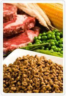 Filler in Pet Food