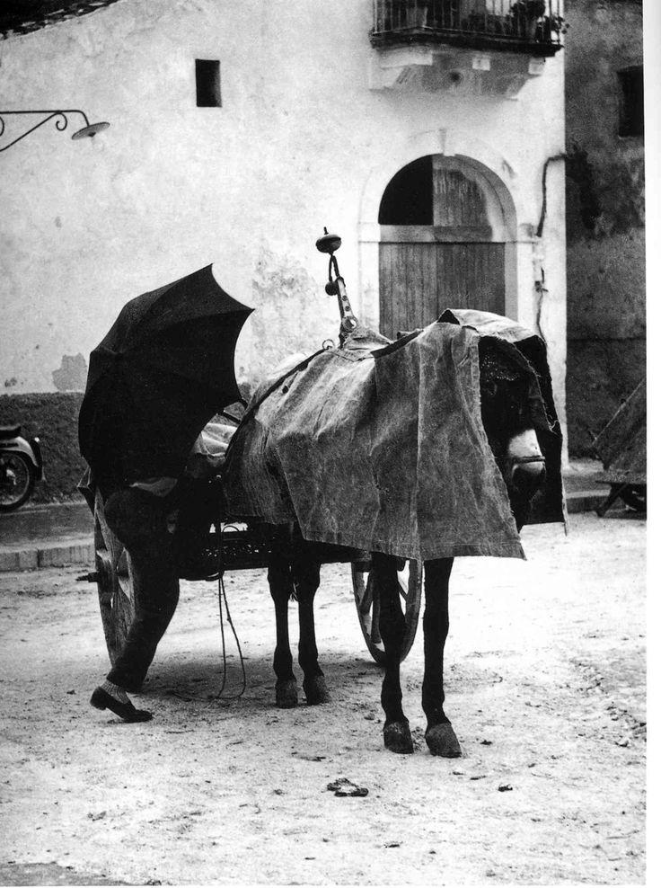 Italian Vintage Photographs ~ #Italy #Italian #vintage #photographs #family #history #culture ~ Enzo Sellerio