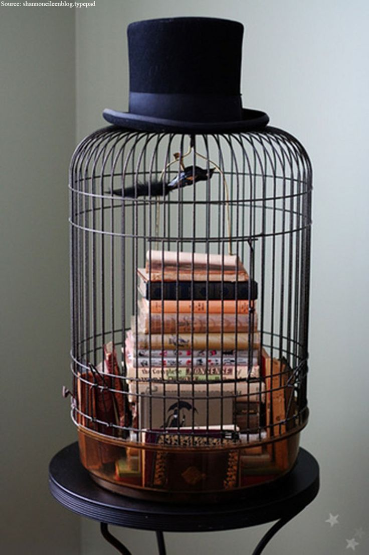 Design and ideas have no boundaries. Look at this exclusive idea of using the bird cage as vegetable decor basket in your kitchen or maybe you are short of storage space for your favourite novels, let's be creative and place a black powder coated bird cage at the corner of your room and organize your favourite novels within it.