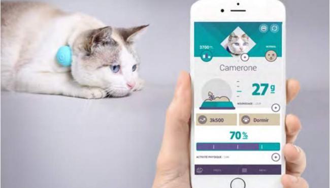 Canhe-Fit, gadgetul inteligent pentru monitorizarea animalelor de companie va fi dezvăluit la #CES2016 Dacă până acum gadgeturile reprezentau un element important în viaţa oamenilor, a venit rândul ca animalele să se poată bucura în aceeaşi m�... http://touchnews.ro/canhe-fit-gadgetul-inteligent-pentru-monitorizarea-animalelor-de-companie-va-fi-dezvaluit-la-ces2016/15371