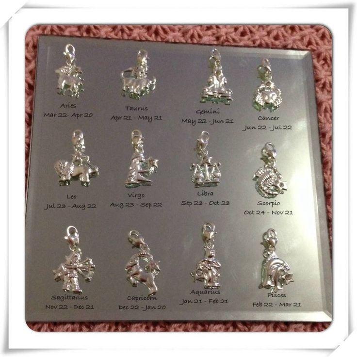 Silver Zodiac Charms