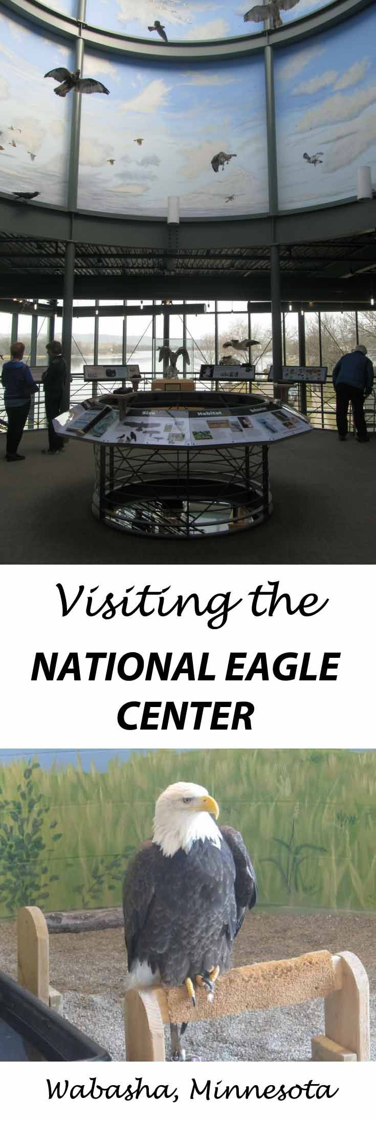 Visiting the National Eagle Center in Wabasha, Minnesota. See live eagle programs and discover many hands-on exhibits at the National Eagle Center, which is located along the shore of the Mississippi River. Check out Minnesota Wonders to find more unique Minnesota travel destinations and family fun! https://minnesotawonders.com