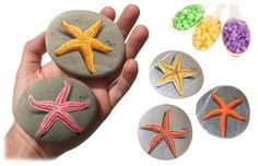 Bomboniere uniche | Stelle marine dipinte su pietra