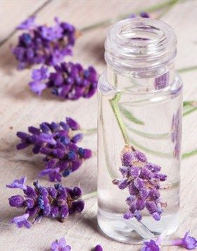 How to Make Perfume. love to know more about it.