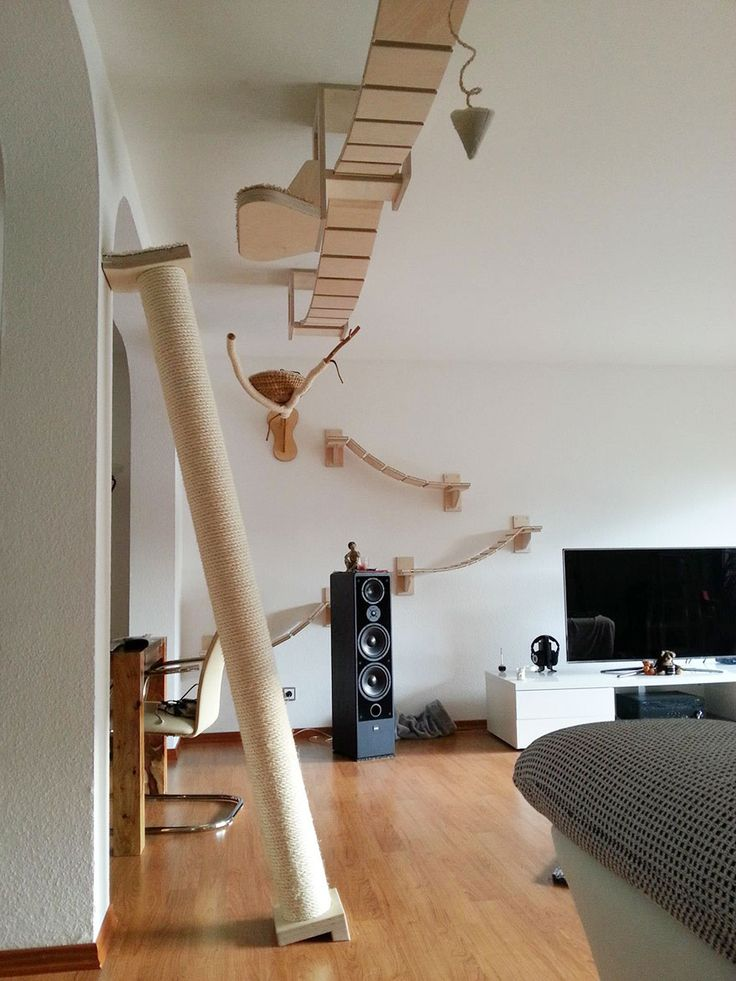 Rooms Transformed Into Overhead Cat Playgrounds With Walkways And Platforms | Bored Panda
