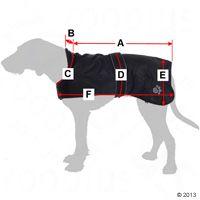Chubasqueros para perros: Chubasquero para perros Tcoat Orleáns