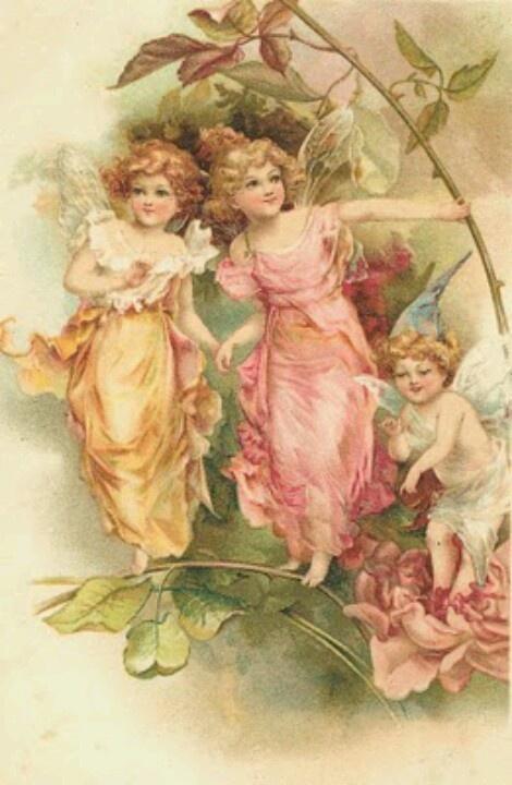 Flower fairys