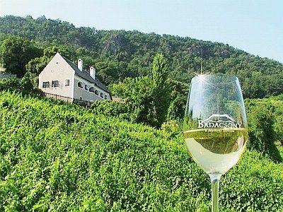 Wijnregio #Badacsony aan het #Balatonmeer in #Hongarije.