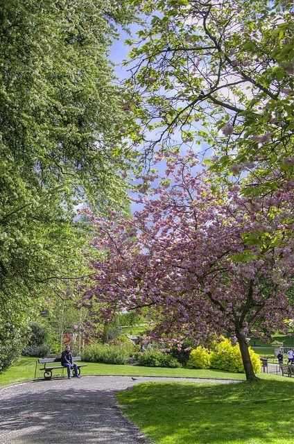 Kensington Gardens, London, England, GB