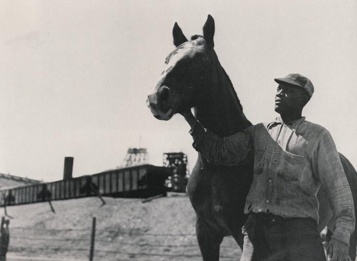 Pit Horse Handler_No 20 Colliery 1952_Glace Bay_Cape Breton   Photographs And Memories of Cape Breton_Cape Breton Nova Scotia