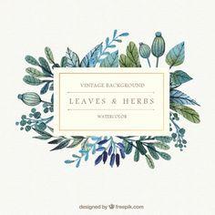 Aquarell Blätter und Kräuter Hintergrund