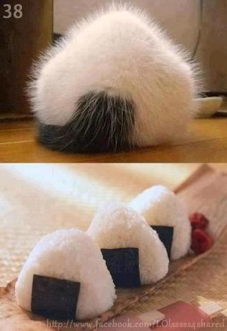 Onigiri (Japanese Rice Ball) butt!