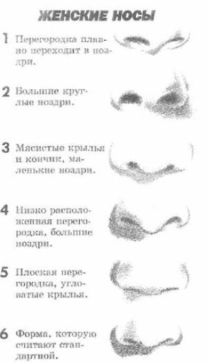 курносый нос как рисовать - Google Search