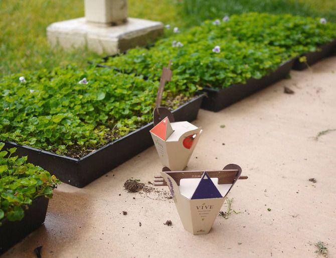 Eco Garden Kits : Eco Garden Kit