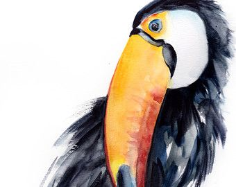 TOUCAN ART PRINT keel-billed toucan rainbow toucan by SignedSweet