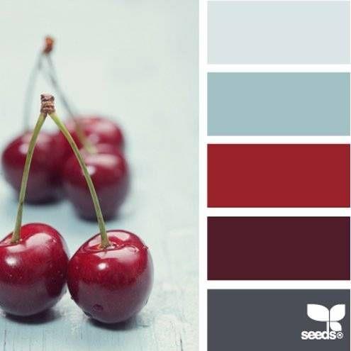 Edible Color | Photo book preview