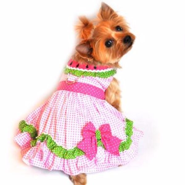 Watermelon Dress – Features D-Ring, Embroidered Seed Collar, Coordinating Pink Polka Dot Bow and Waistband and adorable ruffle skirting. Comes in sizes X-Small through Large and has Velcro enclosures