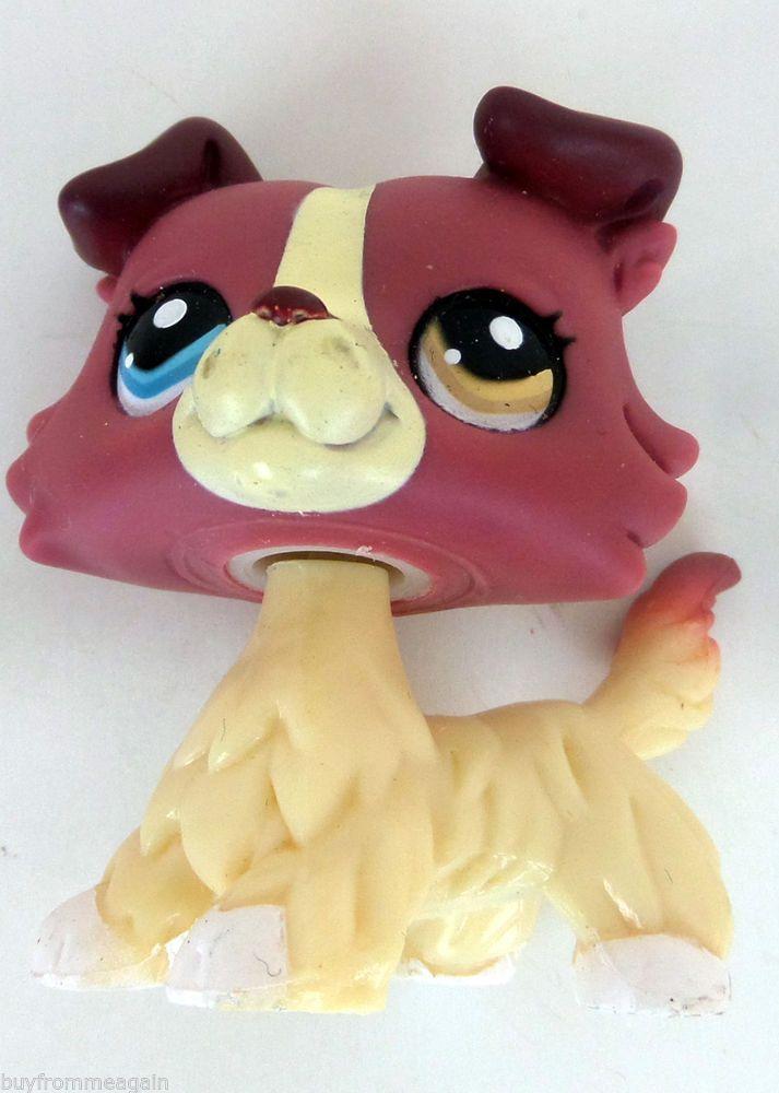 Littlest Pet Shop LPS Dog #1262 Puppy Collie Purple Cream Blue  Green Eyes RARE #Hasbro