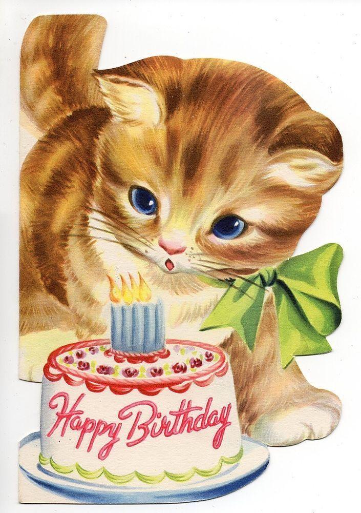 Друзья, открытка на день рождения кошки