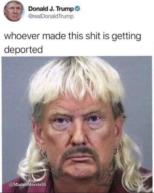 Real Trump Funny Profile Pictures Funny Profile Twitter Profile Picture