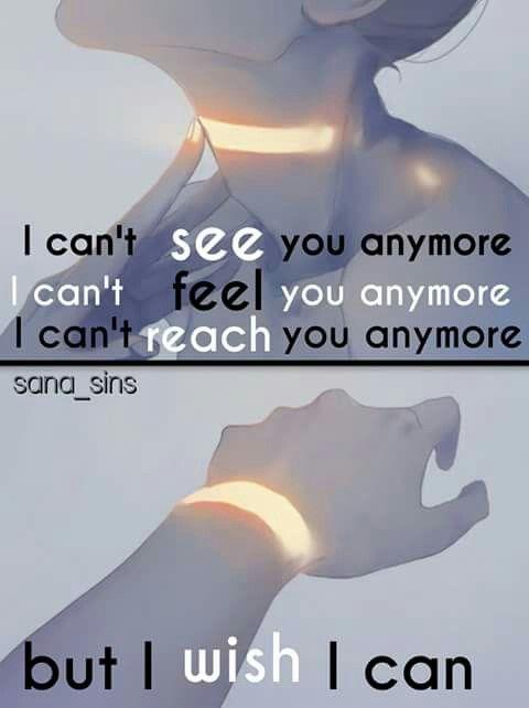 I wish I could....