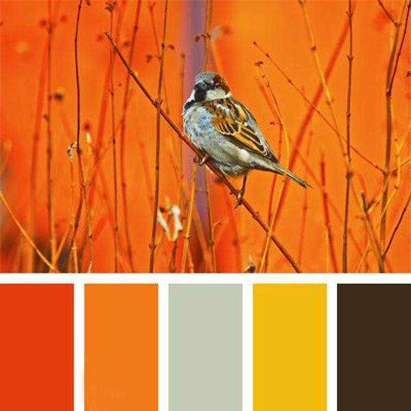 Очаровательные и яркие птичьи цветовые палитры - Ярмарка Мастеров - ручная работа, handmade