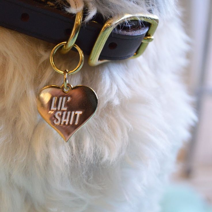 We all love our pets but they can be little jerks. So in that spirit, we created some charms to adorn the collars of our favourite pets. These gold plated 25mm