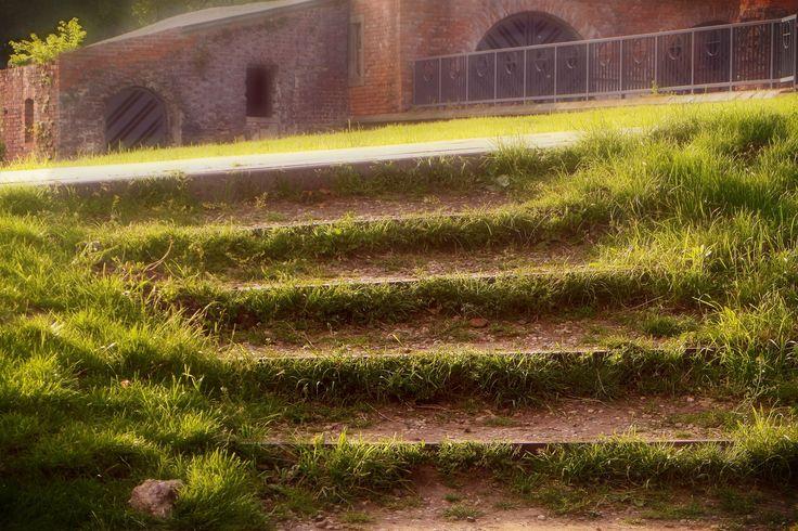 Steps by Grzegorz Adamski on 500px